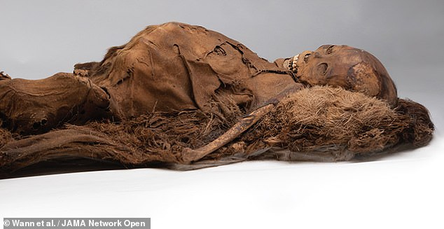 Mummified Inuits that lived 500 years ago had clogged-up arteries despite omega-3 rich fishy diets